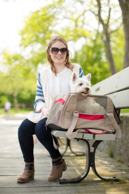 Kurgo Hund Bärare på bänk