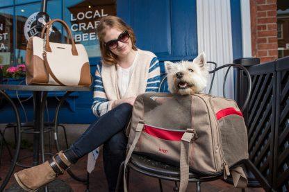 Kurgo Hund Bärare på café