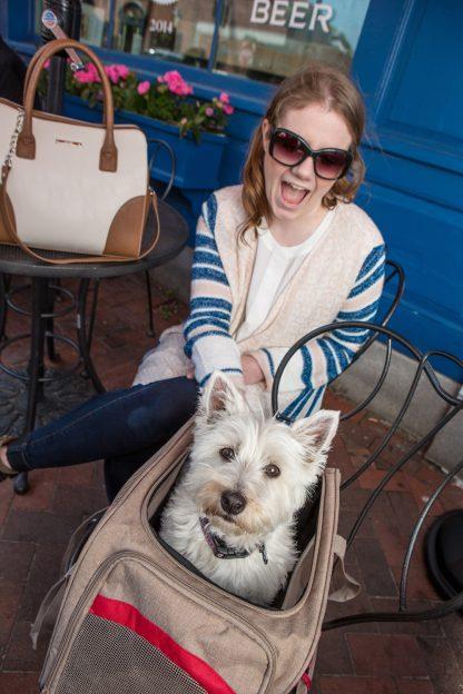 Kurgo Hund Bärare på stol