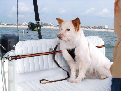 Kurgo Zip Line Båt Hund