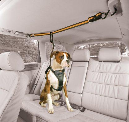 Kurgo Zip Line Bil Hund tak vit bil