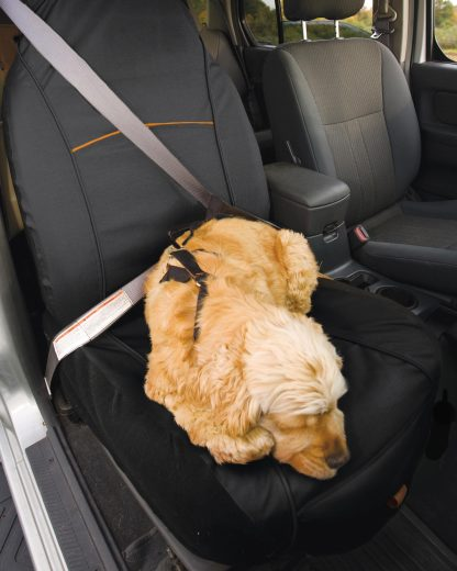Kurgo hund bilsäte skydd