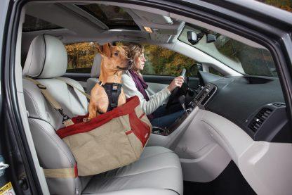 Kurgo bilsäte hund ute och kör